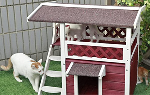Petsfit Haus für Katzen
